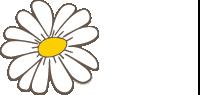 Norsk Helse og Livsstil logo